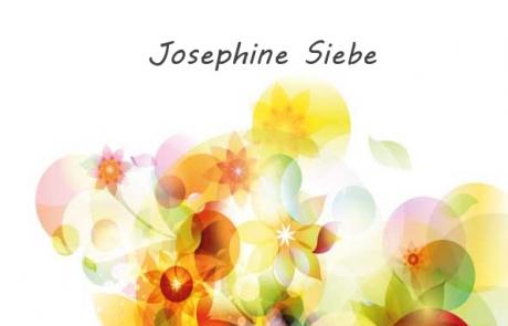 Kasperls Abenteuer in der Stadt - Josephine Siebe